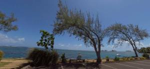 French Polynesian Coastline