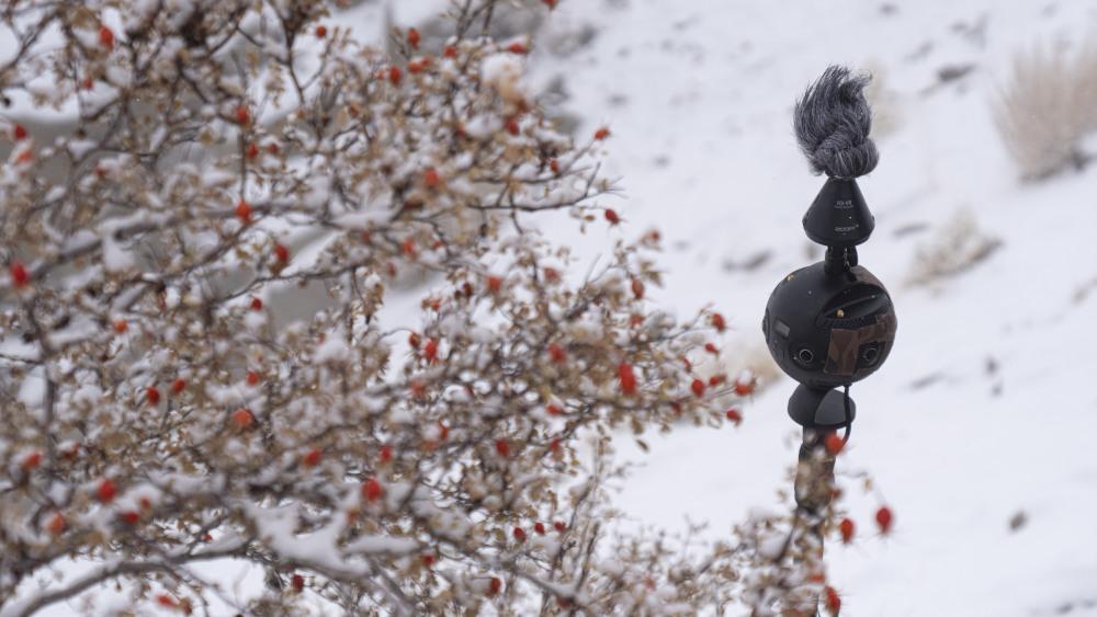 Insta360 Pro 2 in snow